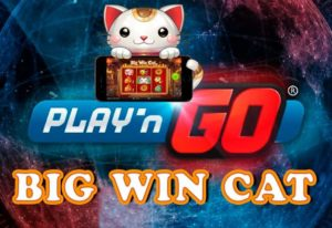 playngo-big-win-cat